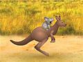 Коала и кенгуру