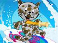 Забота о котенке-серфингисте