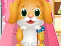 Ветеринар и стоматолог для щенка