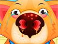 Больной нос домашнего животного