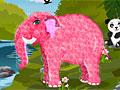 Уход за слоном