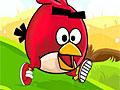 Злые птицы: Пробег