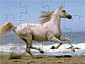 Бегущая лошадь пазл