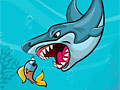 Еда для акулы