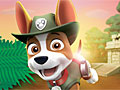 Щенячий патруль: Спастись в джунглях