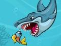 Жирная акула